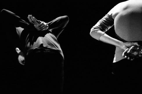 Parcelles © Nina Flore Hernandez